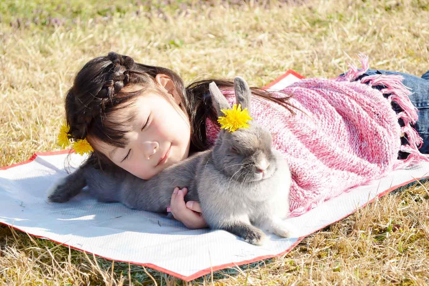 ペットが健やかに長生きするには、飼主の愛情はもちろん、飼育環境・運動量・食事がとても大切